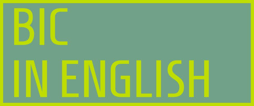 Bic in English